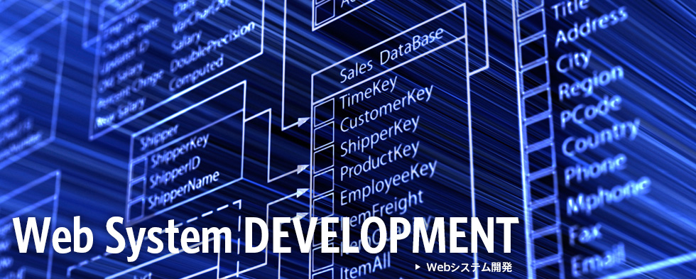 Web System DEVELOPMENT